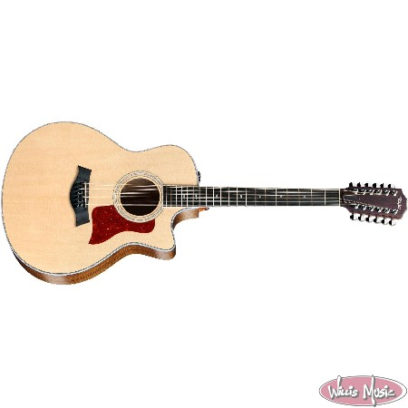 12-String Acoustic-Electric Guitars